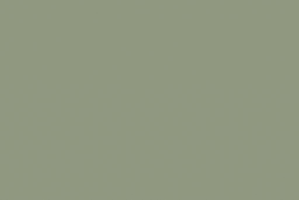 pure paper color pale green 018 skin